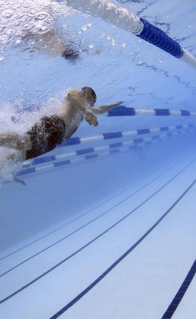 swimmers-79592-min